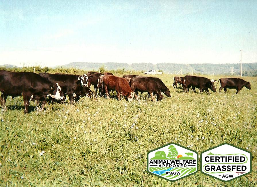 Liberty Flat Farm In Greeneville, TN Farm Profile