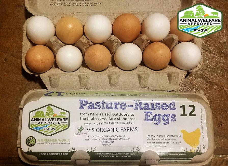 V's Organic Farm In Buena Vista, NM Farm Profile