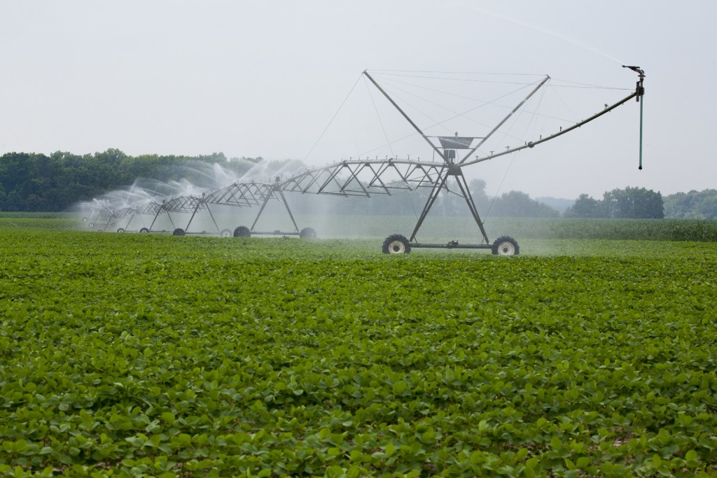 Water Use - Irrigated Soy