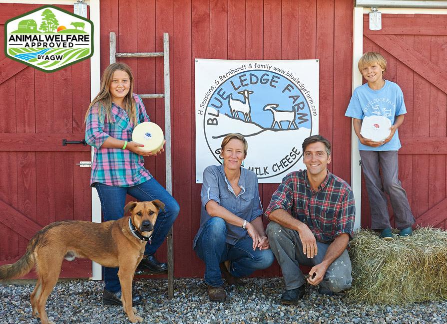 Blue Ledge Farm In Salisbury, VT Farm Profile