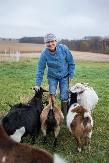 Gretta's Goats At Short Leg Farm In Pecatonica, IL Farm Profile