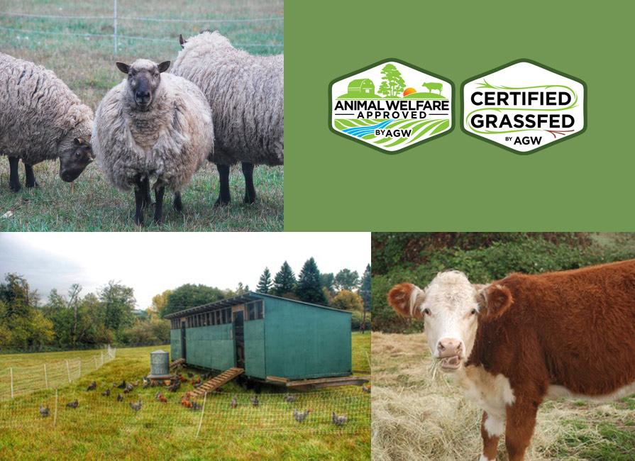 Greene Jungle Farm In Ridgefield, WA Farm Profile