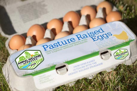 Certified Animal Welfare Approved By AGW Egg Cartons (200 Ct.)