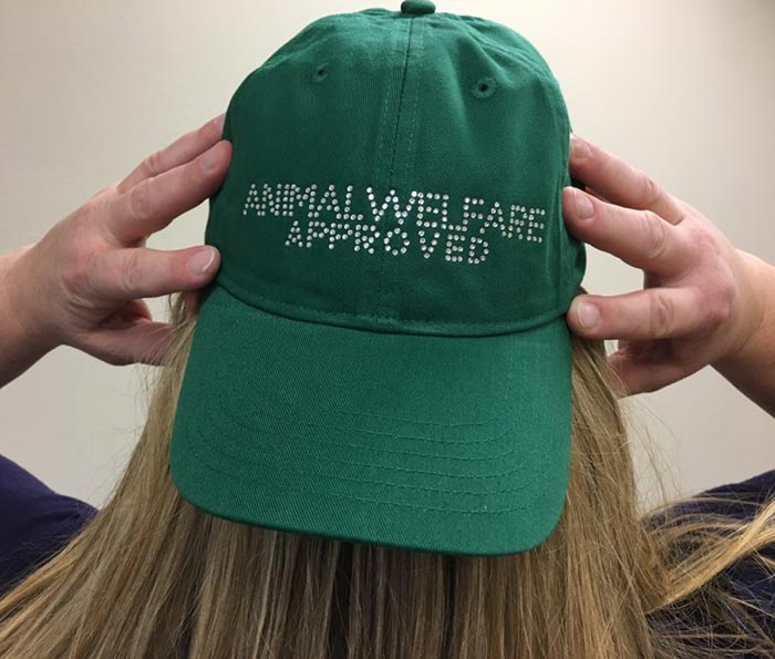 Shop Certified Animal Welfare Approved by AGW rhinestone hat in green color