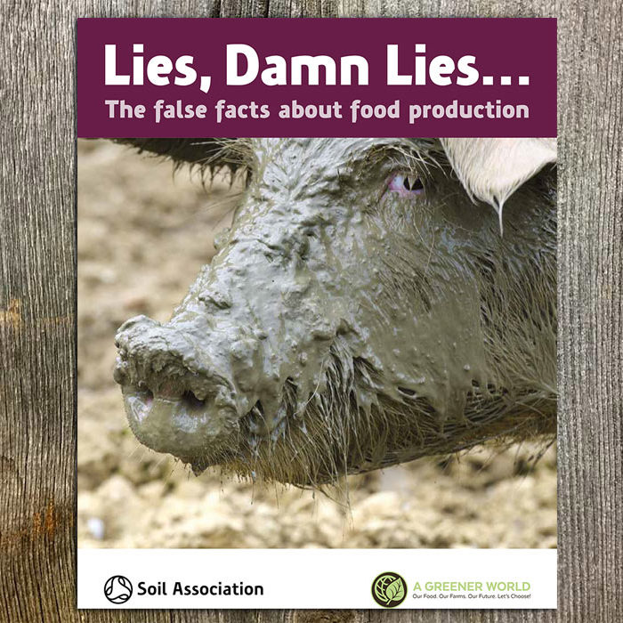 Lies, Damn Lies Report