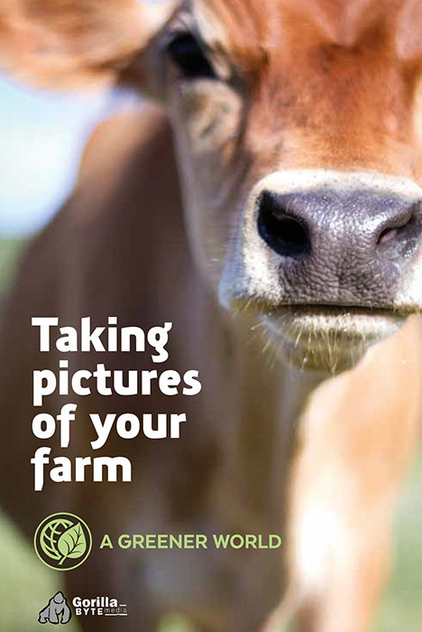 Taking Pictures Of Your Farm