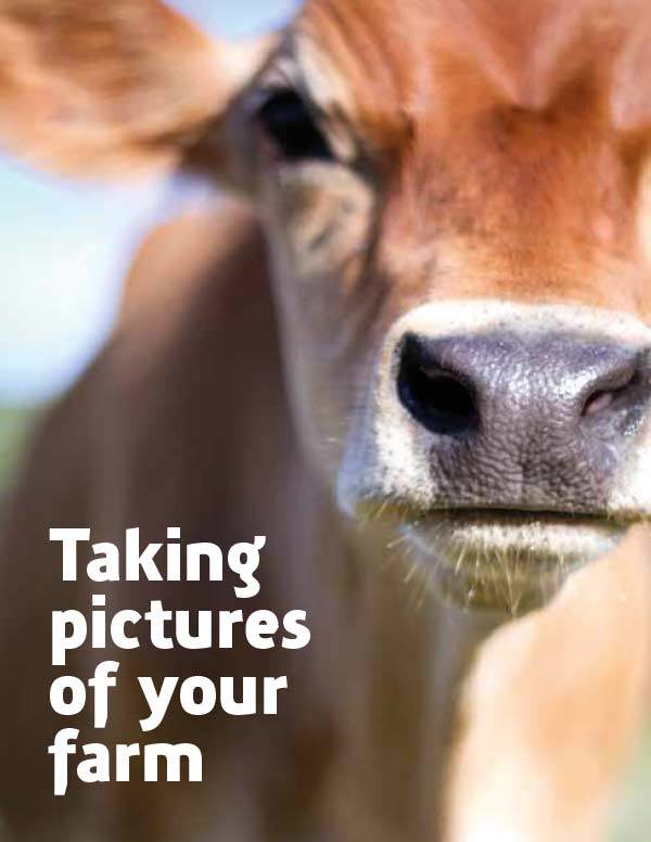 Taking Pictures of Your Farm publication