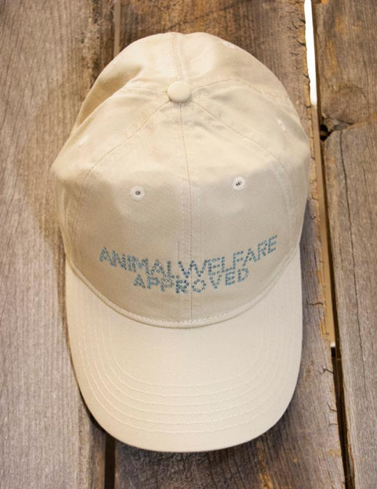 Shop Certified Animal Welfare Approved by AGW rhinestone hat in stone color