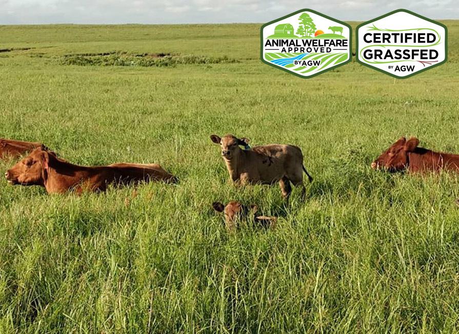 Graze The Prairie In Latham, KS Farm Profile