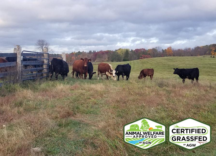Liberty Farms Farm Profile