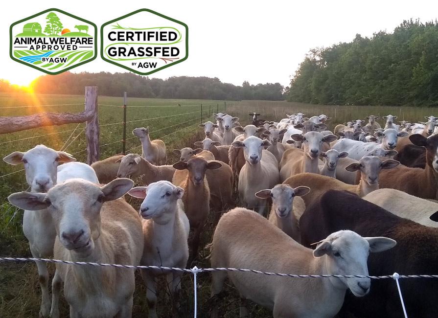 The Pasturage Farm Profile