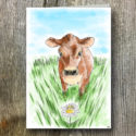 Cow AGW Branded Greeting Card (sold In Packs Of Five)