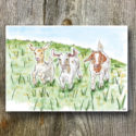 Goat AGW Branded Greeting Card (sold In Packs Of Five)
