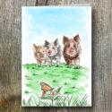 Pig AGW Branded Greeting Card (sold In Packs Of Five)